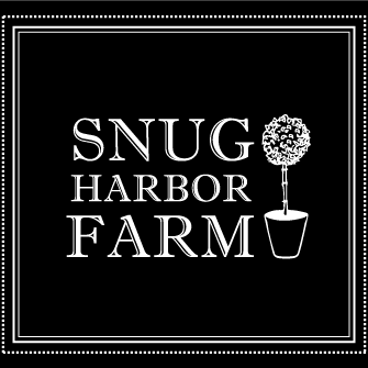 Snug Logo Square Seal